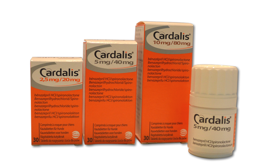 cardalis_940x565