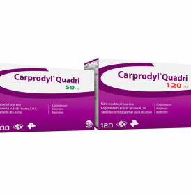 carprodyl-quadri_tiny