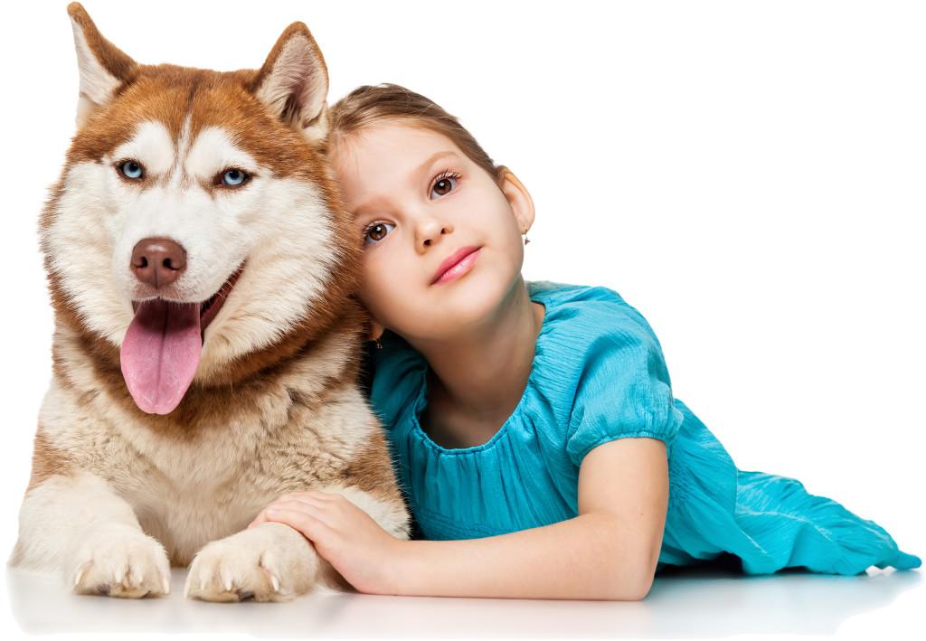 kislany_kutya