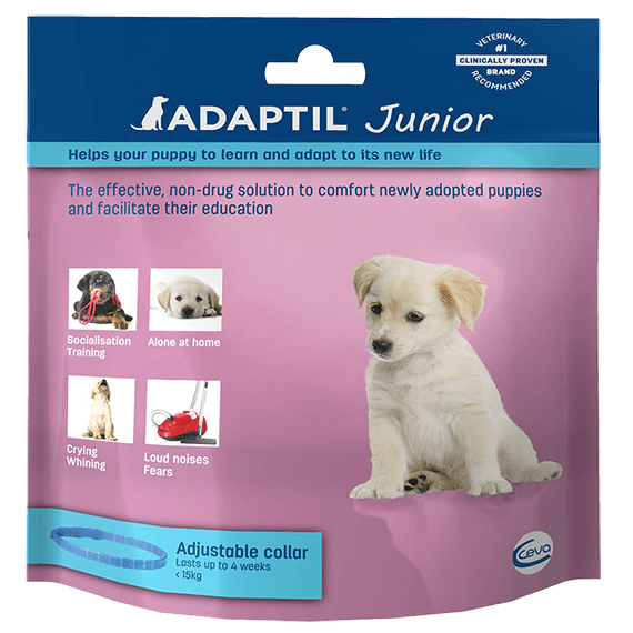 Adaptil-junior-collar-face-UK_570x570