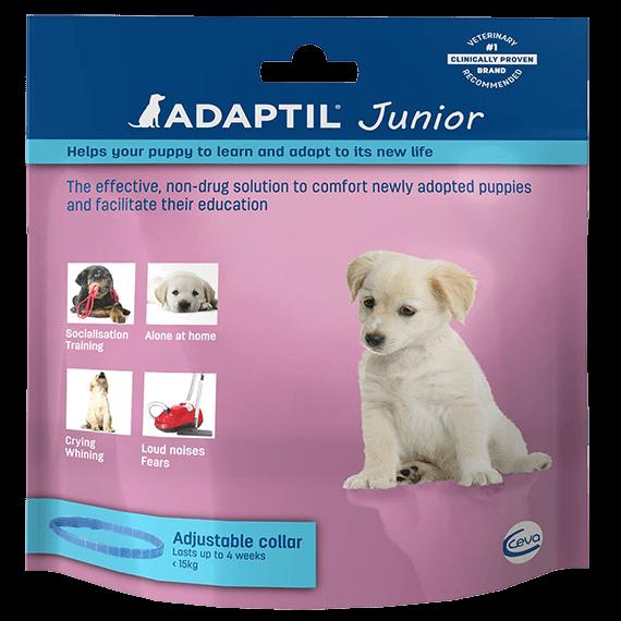 Adaptil-junior-collar-face-UK_570x570